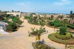 Aladdin Beach Resort - Аладдин Бич Резорт, Хургада